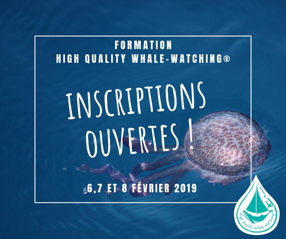 Session de formation High Quality Whale-Watching® 2019